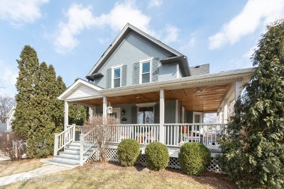 Hinsdale Single Family Home For Sale: 415 South Monroe Street