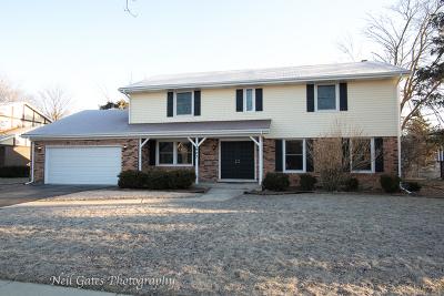 Flossmoor Single Family Home New: 2907 Kathleen Lane