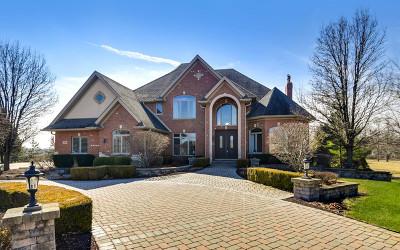 Homer Glen Single Family Home New: 15403 West Wheatstone Drive