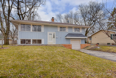 Naperville Single Family Home New: 230 Elmwood Drive