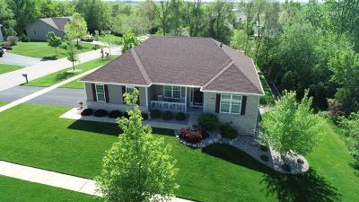 Mc Henry County Single Family Home New: 11203 Thorn Bird Lane
