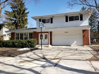Arlington Heights Single Family Home For Sale: 1323 North Vail Avenue