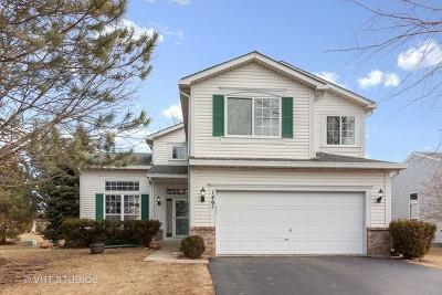 Bolingbrook Single Family Home For Sale: 146 Cider Street