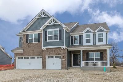 Hoffman Estates Single Family Home For Sale: 3484 Harold Lot# 53 Circle