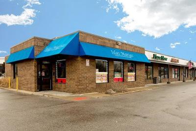 Hanover Park Commercial For Sale: 6602 Barrington Road