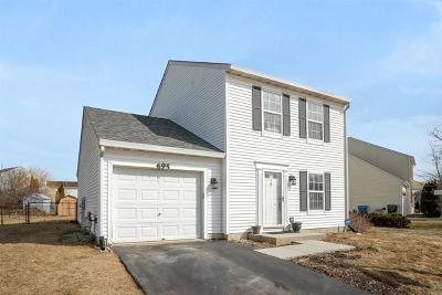 South Elgin Single Family Home For Sale: 695 Ridge Road