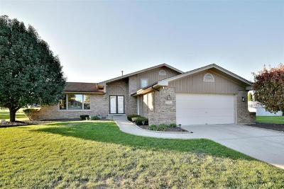 Homer Glen Single Family Home For Sale: 15356 Pinto Street