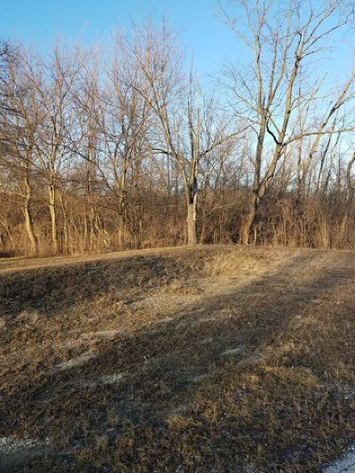 Orland Park Residential Lots & Land For Sale: 15641 113th Avenue