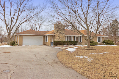 Elgin Single Family Home For Sale: 1569 Dale Drive
