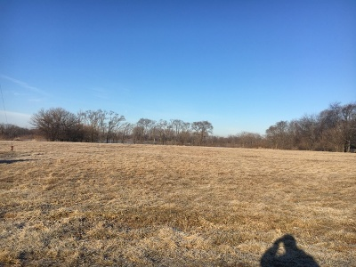 Kane County Residential Lots & Land New: 1205 Orchard Road