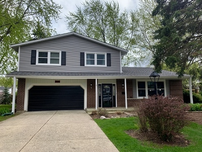 Palatine Single Family Home For Sale: 93 West King Arthur Court