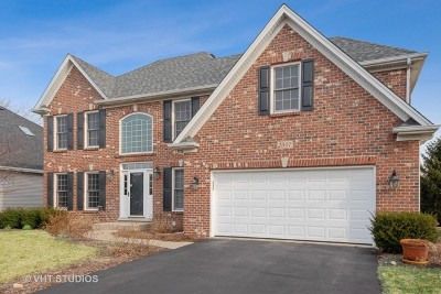 Naperville Single Family Home For Sale: 2807 Fairhauser Court