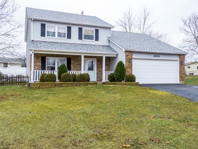 Woodridge Single Family Home For Sale: 6624 Oak Tree Trail