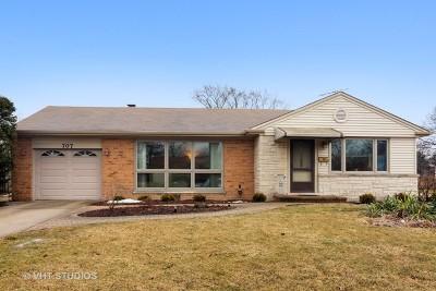 Mount Prospect Single Family Home New: 707 West Dresser Drive
