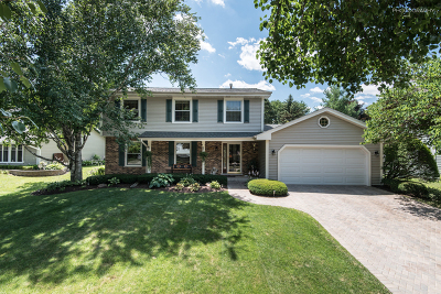 Naperville Single Family Home Re-Activated: 1120 Hidden Spring Drive