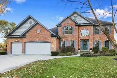 Palatine Single Family Home New: 1285 North Shoreside Court