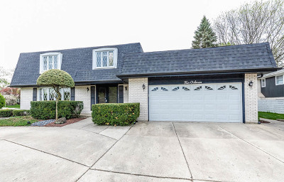 Downers Grove Single Family Home For Sale: 407 Ridgeview Street
