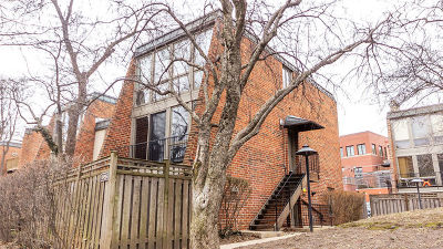 Chicago Multi Family Home For Sale: 2035 North Larrabee Street
