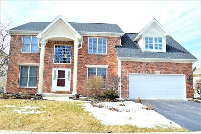 South Elgin Single Family Home For Sale: 694 Chasewood Drive
