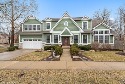 Downers Grove Single Family Home For Sale: 1537 Thornwood Drive