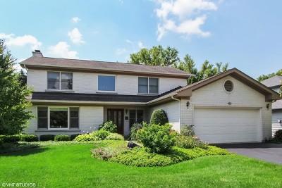 Buffalo Grove Single Family Home New: 475 Newtown Drive