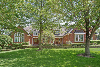 Orland Park Single Family Home For Sale: 10801 Crystal Springs Lane