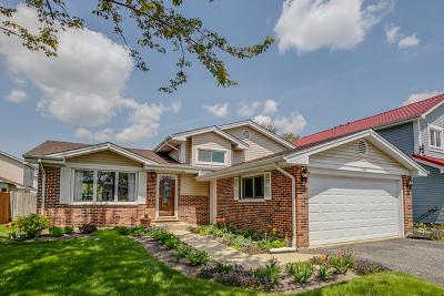 Palatine Single Family Home New: 1130 East Meadow Lake Drive