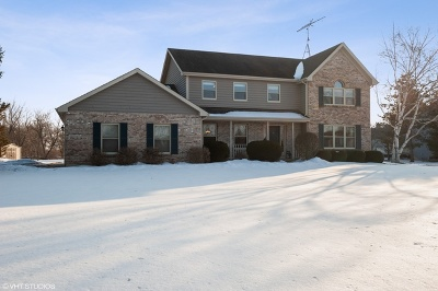Woodstock Single Family Home For Sale: 10203 Saddlebred Trail