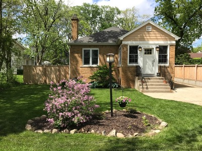 Elmhurst Single Family Home New: 343 East Butterfield Road