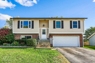 Aurora Single Family Home For Sale: 3055 Fox Hill Road