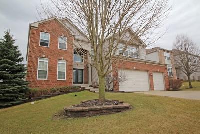 Streamwood Single Family Home For Sale: 322 English Oak Lane