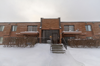 Schaumburg Condo/Townhouse For Sale: 722 Tullamore Court #1A