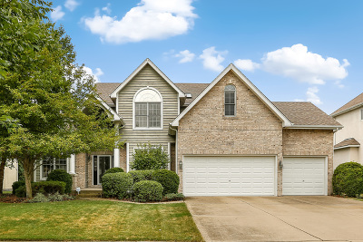 Naperville Single Family Home For Sale: 2415 Joyce Lane