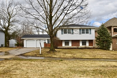 Glen Ellyn Single Family Home New: 21w716 Buckingham Road