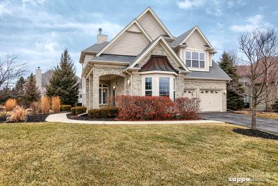 Plainfield Single Family Home For Sale: 26312 West Elizabeth Court