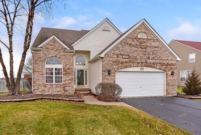 Bartlett IL Single Family Home New: $367,900