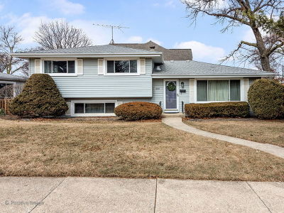 Downers Grove Single Family Home Contingent: 300 3rd Street