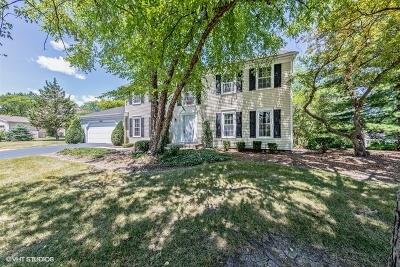 Palatine Single Family Home New: 1252 West Illinois Avenue