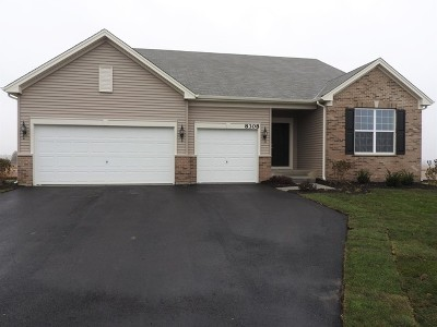 Joliet Single Family Home New: 8610 Buckingham Road