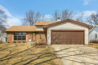 Naperville Single Family Home New: 1347 Sunnybrook Drive