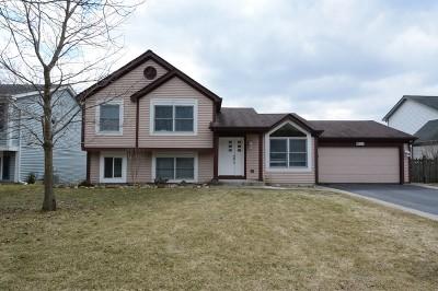 Fox River Grove Single Family Home New: 405 Asbury Avenue