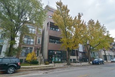 Condo/Townhouse New: 2549 North Southport Avenue #2