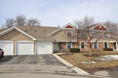 Schaumburg Condo/Townhouse New: 220 Oak Knoll Court #B1