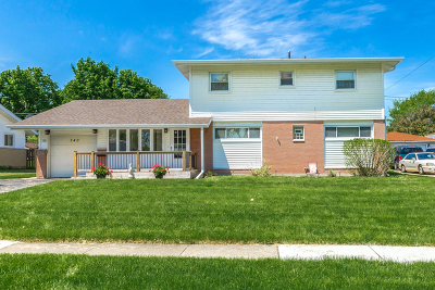 Hoffman Estates Single Family Home For Sale: 340 Payson Street