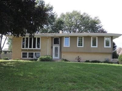Roselle Single Family Home For Sale: 560 Lincoln Street