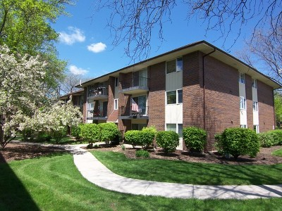 Condo/Townhouse New: 5s066 Pebblewood Lane #B6