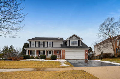 Hoffman Estates Single Family Home For Sale: 5217 Galloway Drive