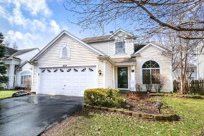 Bartlett IL Single Family Home New: $275,000