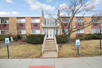 Lombard Condo/Townhouse For Sale: 1313 South Rebecca Road #105A