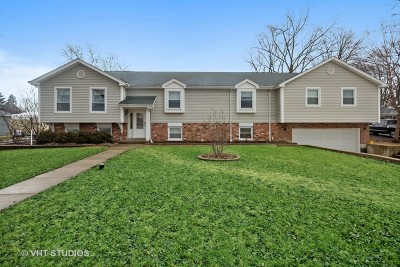 Glen Ellyn Single Family Home New: 1631 Lorraine Road